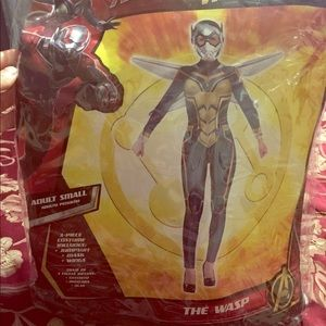 The wasp costume